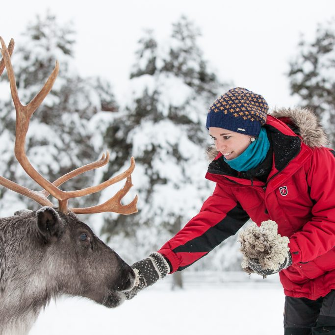 Faszination Lappland (FIT2