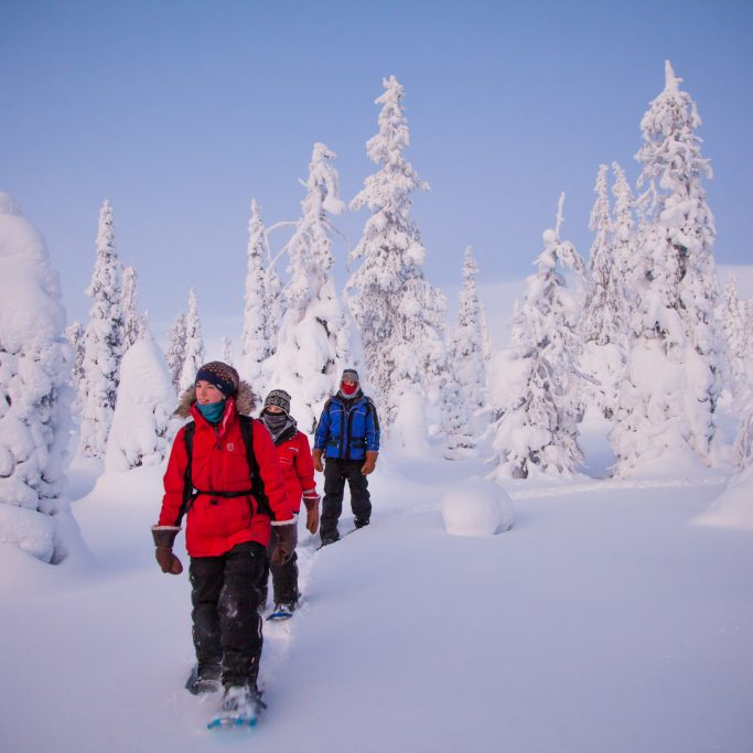 Natürlich Nordlichter - Kurztripp Lappland (FIT3)