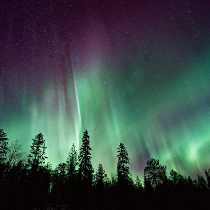 Nordlicht-Woche am Polarkreis