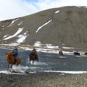 Silvester auf dem Pferdehof (ISA2)